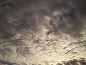 photo1171