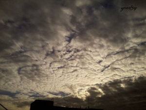photo1172