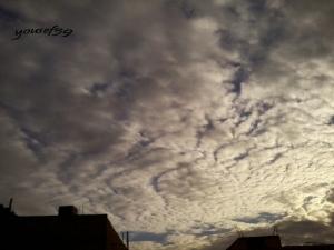 photo1173