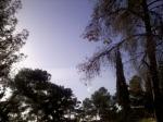 semnul de pe cer