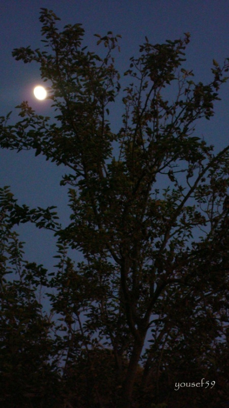luna prin agud
