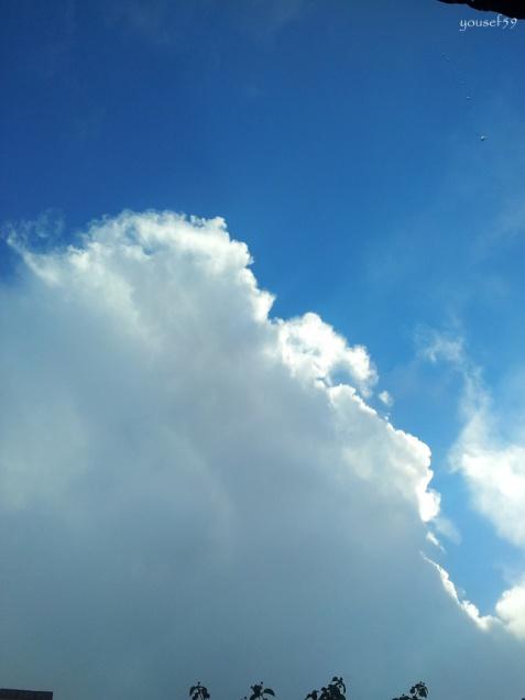 am urmarit dansul norilor