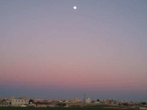 plimbare de februarie in zona aeroportului Queen Alia