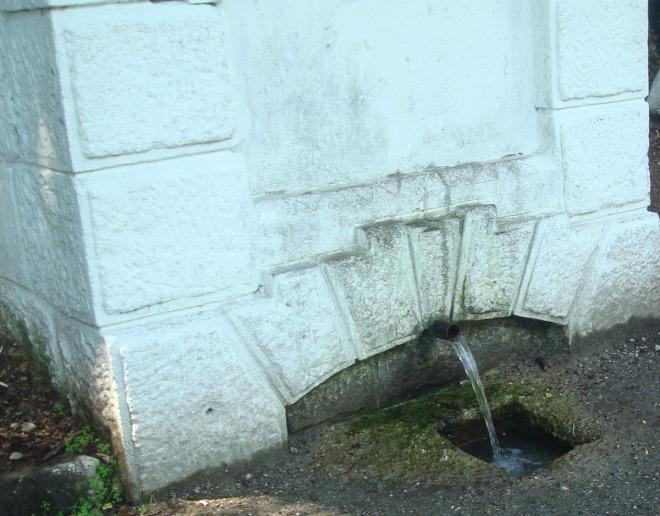 """"""" Vino-n codru la izvorul. Care tremura pe prund..."""""""