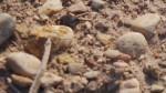 piatra,sare si nisip