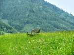 solitude-alone-bench-field-flowers-grass-green-mountains-solitude-spring