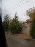ploaia binecuvîntată